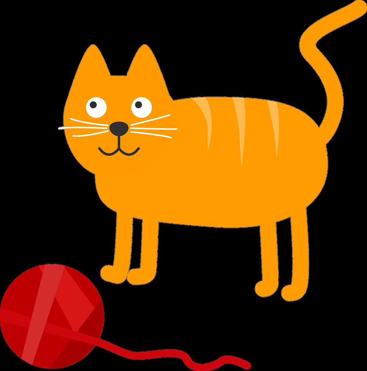 2016-1-9_vector_potential_cat